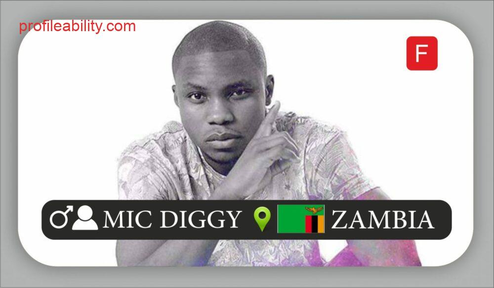 MIC Diggy Profile1